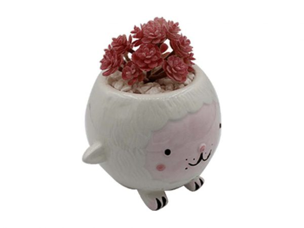 Planta animal 44 oveja blanca