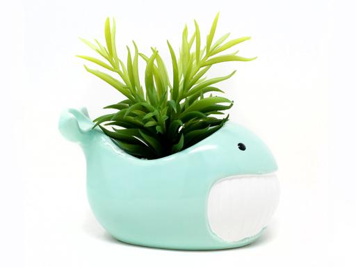 Planta animal 42 ballena celeste