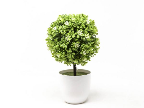 Bonsai flores 1 blanco
