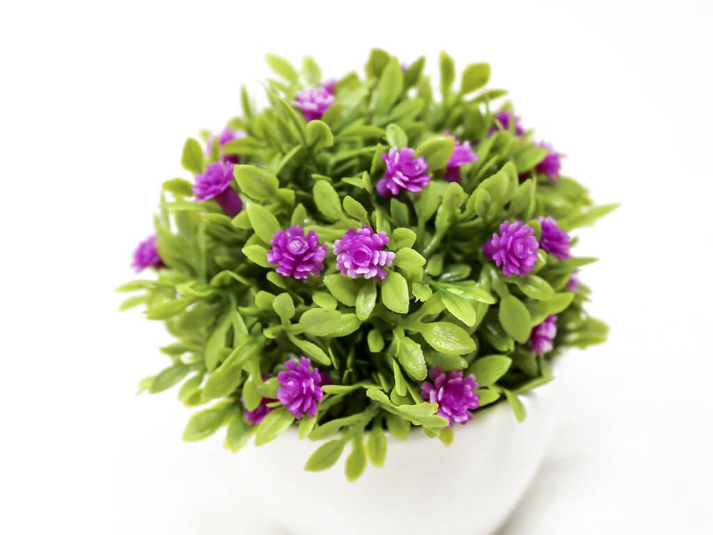 Bonsai flores 14 purpura detalle 2