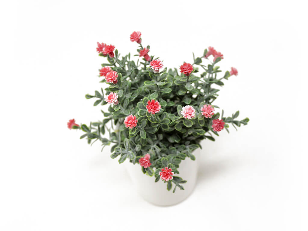 Bonsai flores 30 rojo detalle