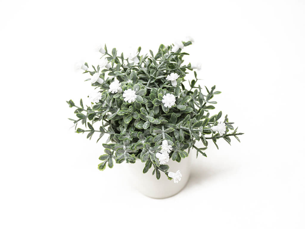 Bonsai flores 30a blanco detalle