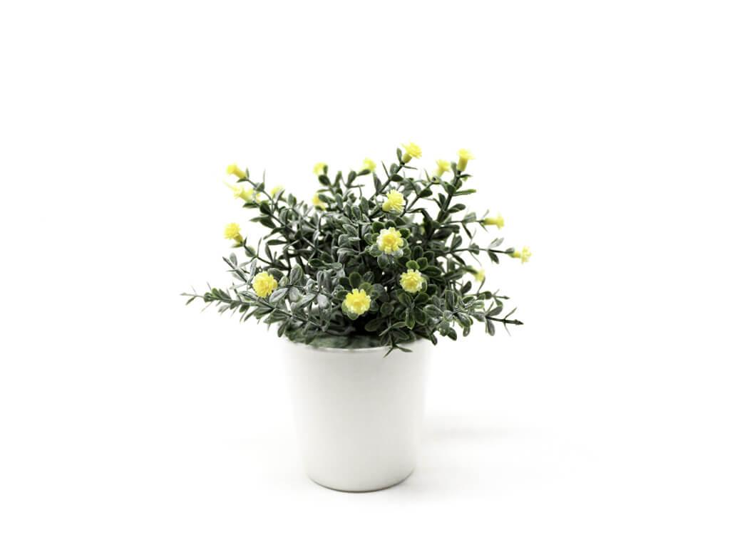 Bonsai flores 30b amarilla