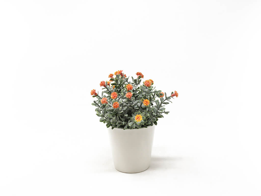 Bonsai flores 30d naranja