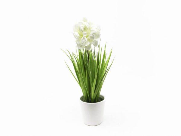 Bonsai flores 38 blanco