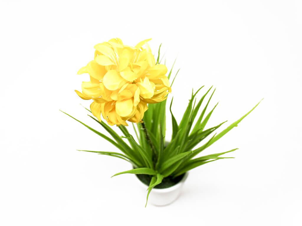 Bonsai flores 39 amarillo arriba