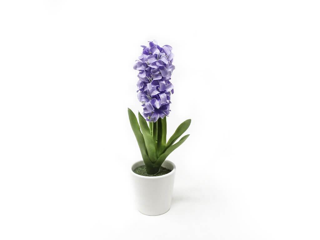 Bonsai flores 45 purpura