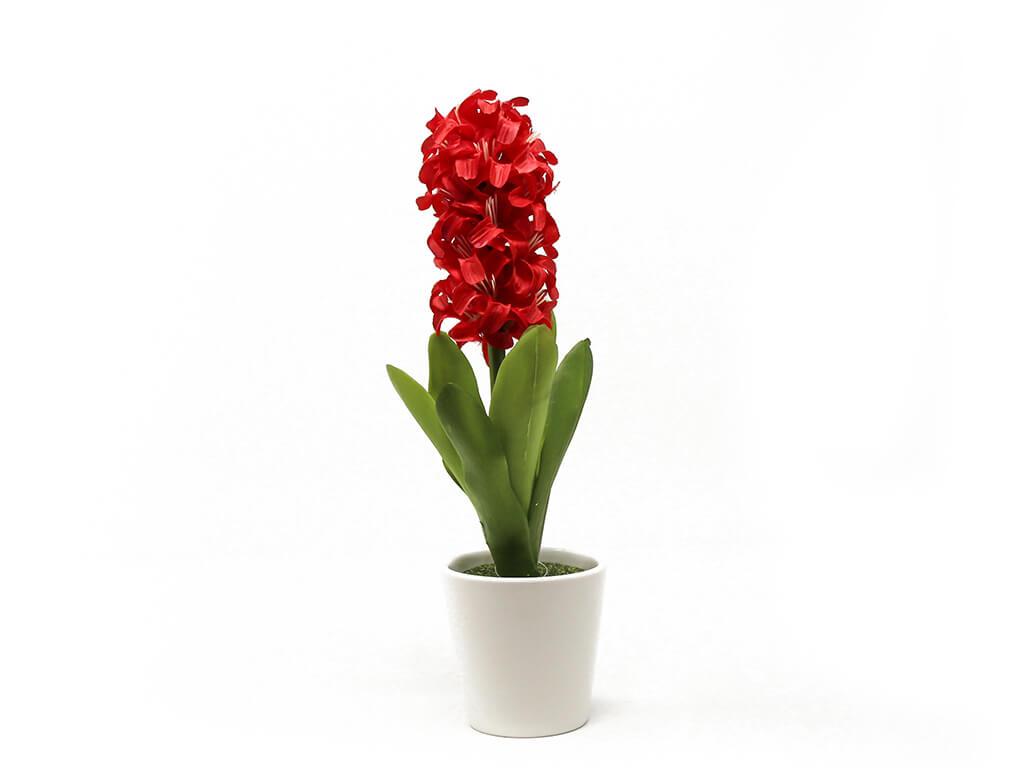 Bonsai flores 47 rojo