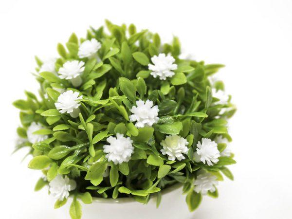 Bonsai flores 9 blanco detalle 2