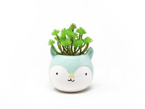Planta animal 4 conejo ch aqua